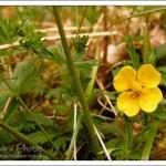 Spring – full of optimism