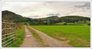A lovely area of farmland we drove through near Keswick.