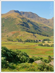 The Langdales looked as fabulous as I've ever seen them, the light just made the textures and colours sing.