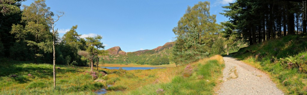 Taken on the perimeter walk around Blea Tarn in the Langdales. 3 landscape frames stitched.