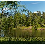 Walking around Tarn Hows in the English Lake District on a lovely day - we just stop on every seat to enjoy looking at the trees.