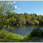 Walking around Tarn Hows in the English Lake District on a gorgeous June afternoon.