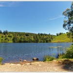 Tarn Hows in the English Lake District on a gorgeous hot sunny June afternoon.